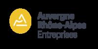 Logo région auvergne rhône alpes entreprise
